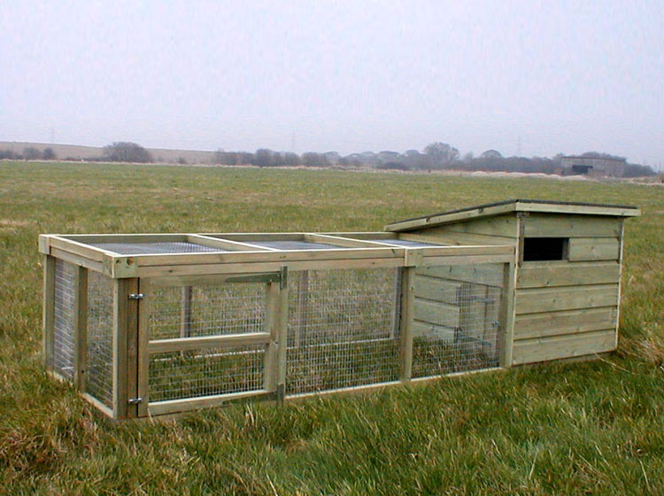 The newton chicken house for Duck houses and runs