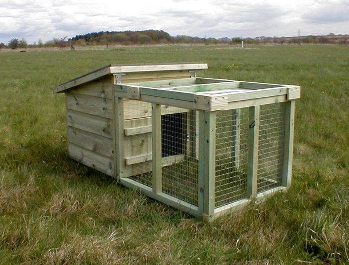 Broody coop for Duck house size